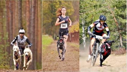 Kernavėje rinksis greičiausi Baltijos šalių šunys