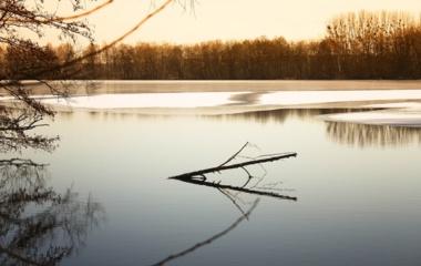 Liepos pirma pusė – kuriose maudyklose nerekomenduojama maudytis