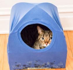 Kaip pagaminti katei palapinę?