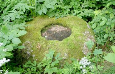Sprendžiamas Tauragnų seniūnijoje esančių akmenų su dubenimis likimas