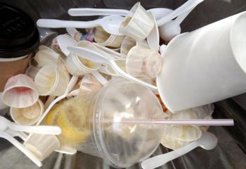 Gyvenimas be atliekų – tik fanatikams?