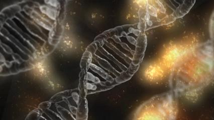 Pripažinimas: Vilniuje prasideda milžiniška genomo redagavimo technologijai skirta mokslinė konferencija