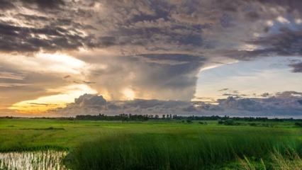 Orai: lietų jau greitai pakeis karščio banga