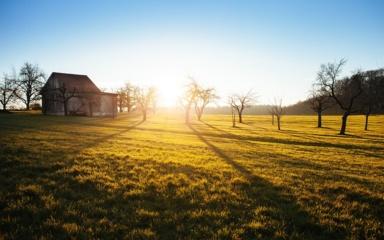Žemdirbiai raginami nedelsti ir pranešti apie sutvarkytus buvusius netinkamus paramai žemės plotus