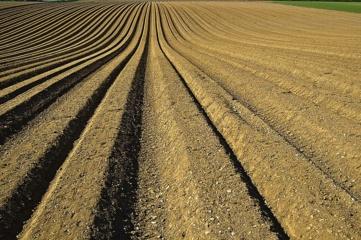 Ūkininkas įpareigotas atlikti hidrogeologinį tyrimą fermos teritorijoje