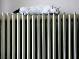 """Per Velykas radiatoriai kauniečių būstuose dar gali """"alsuoti"""" šiluma"""