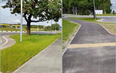Ką reikia žinoti apie tvarkomus želdinius valstybinės reikšmės keliuose?