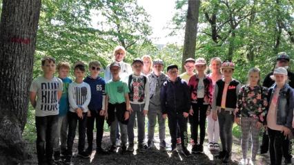 Mokomosios ekskursijos į Vidzgirio mišką