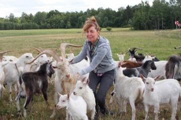 Veiviržėniškės svajonė modernizuoti ožkų ūkį