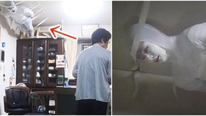 Japono pokštas močiutei tapo sensacija: vaikinas palubėje kabėjo visą valandą (vaizdo įrašas)