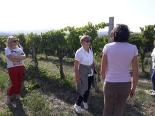 """Tarptautinio """"Erasmus+"""" KA2 projekto """"Healthy steps to better future"""" vizitas Italijoje"""
