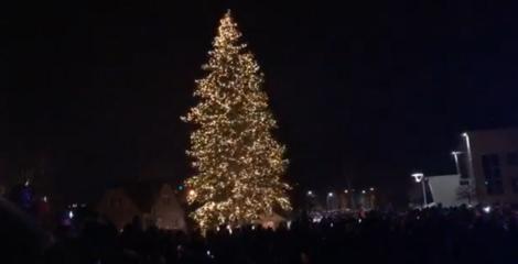 Joniškyje auksu nušvito miesto Kalėdų eglė