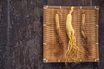 Augalo šaknis, padėsianti įveikti nuovargį
