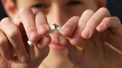 Kada ir kaip atsigauna kūnas metus rūkyti?