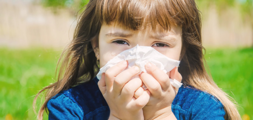 Alergologai patvirtina: pavasarinė alergija jau pastebima