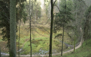 Aukštadvario ir Kurtuvėnų regioniniuose parkuose – pusiaužiemio žygiai