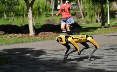 Pandemijos metu parkuose patruliuoja robotai ir įspėja laikytis saugaus atstumo (vaizdo įrašas)