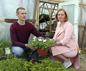 Karantinas Suvalkijos gėlių ir daržovių augintojams išėjo į naudą