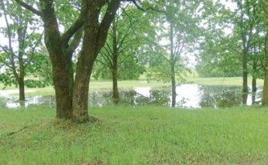 Rajoną plovė milijonai tonų vandens