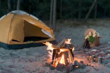 Netvarkinga stovyklavietė vilioja graužikus