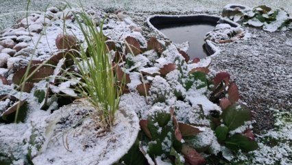Savaitgalis bus žvarbus: šaltis atsitrauks tik trumpam
