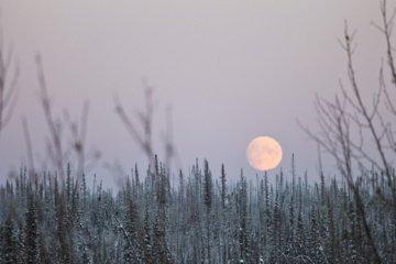 Dalyje Lietuvos fiksuojamas padidėjęs oro užterštumas kietosiomis dalelėmis