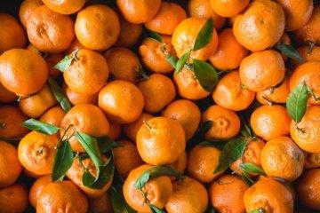Mandarinai - kodėl be jų neįsivaizduojame žiemos švenčių?