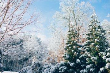 Žiema nepasikuklins – savaitgalį Lietuvą sukaustys šalčiai