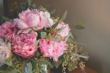 Dovanojamų gėlių reikšmės
