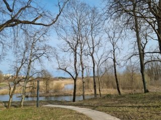 Kuršėnų jaunimo idėjos: plaustas per Ventą ir tinklinio aikštelė prie upės