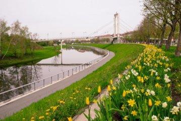 Kaunas pasirūpino ryškiu fonu asmenukėms: miestą papuošė tūkstančiai įvairiaspalvių gėlių