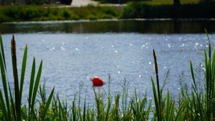 Dauguma ežerų įšilo iki 22–24 laipsnių, maudynėms tinkamas ir giliausias šalies ežeras