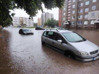 Liūtis tvindo Šiaulių gatves
