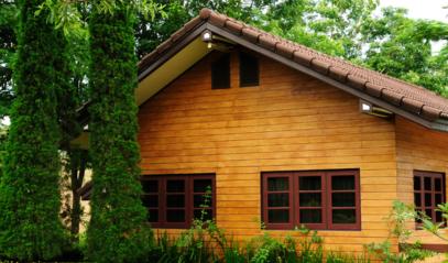 Medis jūsų namuose – kodėl tai niekada neišeis iš mados?