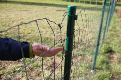 Pasidaryk pats. Atėję su šunimis į naują aptvarą, gyventojai atsineša savo virves– užrišti naujus vartus, kad jie neatsidarytų. (Audronio Rutkausko nuotr.)