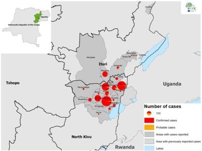 1 pav. Ebolos hemoraginės karštligės atvejų geografinis pasiskirstymas