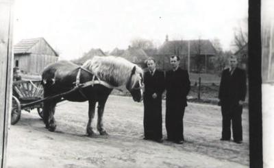 Rumšiškės. 1956 m. Tolumoje matosi bažnyčia.