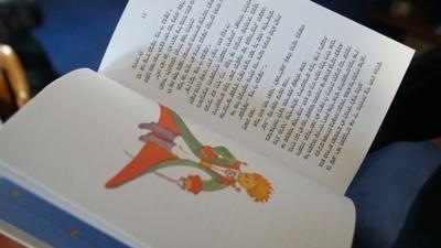 """Įvairovė. Aistės surinktoje """"Mažojo princo"""" kolekcijoje gausu įvairiomis kalbomis išleistų knygų. Tarp jų– net izraelietiška, kurią versti reikia iš kito galo. O artimiausia širdžiai Aistei visgi yra atvykėlė iš Brazilijos."""