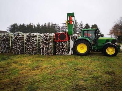 Eksportuoti paruošti kėniai. Prasidėjus sezonui, įmonės darbuotojai per dvi savaites turi nupjauti ir prekybai paruošti kelis šimtus tūkstančių medelių.