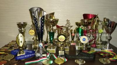 Per penkerius metus sukaupti apdovanojimai. Ritos Kiršinienės asmeninio archyvo nuotr.