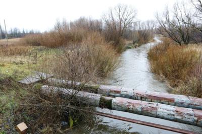 SMELTALĖ - upė, bet gyventojai sako, kad iš jos teliko upelis. Egidijaus JANKAUSKO nuotr.