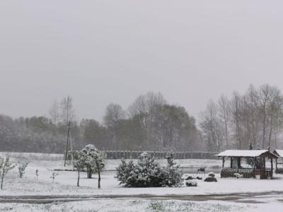 Ukmergės rajonas. Daiva Virbalienė @ Orai ir klimatas Lietuvoje