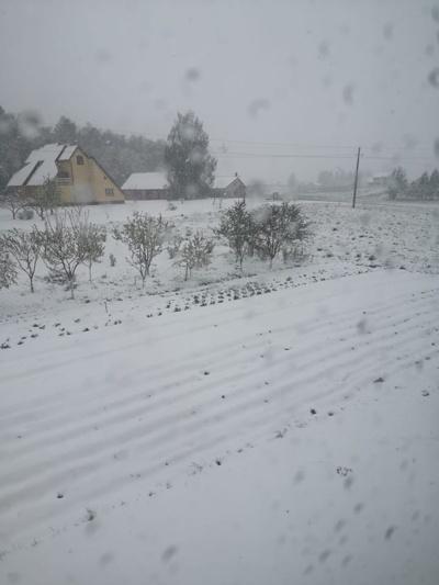 Alytaus rajonas. Gitana Kudarauskienė @ Orai ir klimatas Lietuvoje