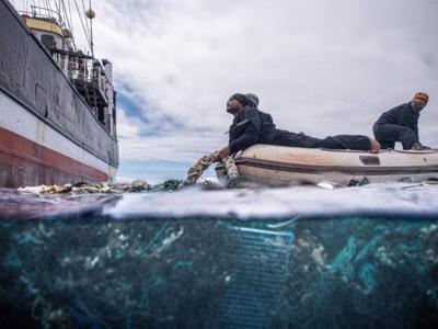 © Ocean Voyages Institute