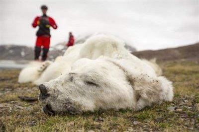 © Ashley Cooper / Global Warming Images