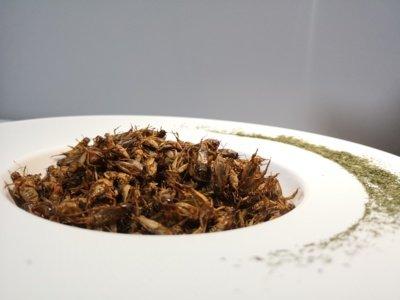 """""""Suvalkijos svirpliai"""" šiuo metu gamina keturių skonių džiovintus svirplius: su druska, česnakais, svogūnais ir kuminu, čili pipirais ir rūkyta paprika."""