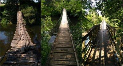 Dzūkijos beždžionių tiltai. Etaplius.lt nuotr.
