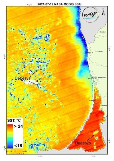 1 pav. Jūros paviršiaus temperatūros (SST) žemėlapis 2021-07-19 pagal palydovinius NASA MODIS duomenis.
